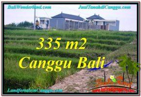JUAL MURAH TANAH di CANGGU 3.35 Are di Canggu Umalas