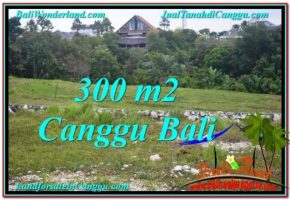 JUAL TANAH MURAH di CANGGU 300 m2  View sawah lingkungan villa