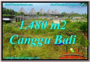 DIJUAL TANAH MURAH di CANGGU BALI 1,480 m2 di Canggu Pererenan
