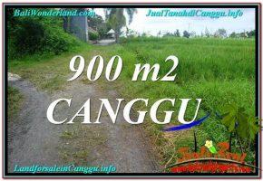 TANAH di CANGGU BALI DIJUAL 9 Are di Canggu Batu Bolong